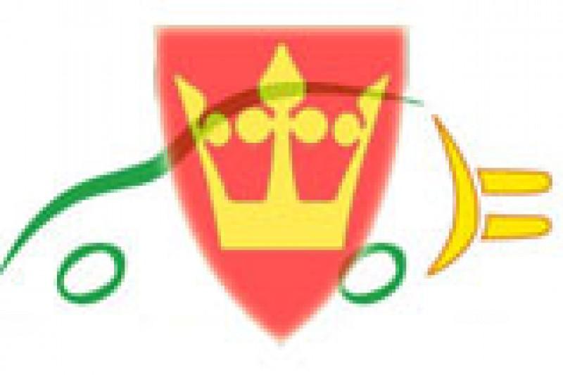 Vestfold Elbilforening igang
