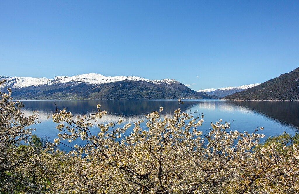 Nasjonal turistveg Hardangforden ved Kinsarvik