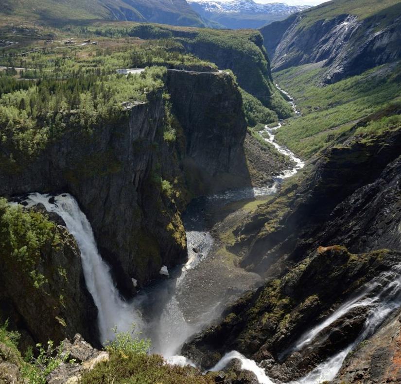 Hardangervidda bilde