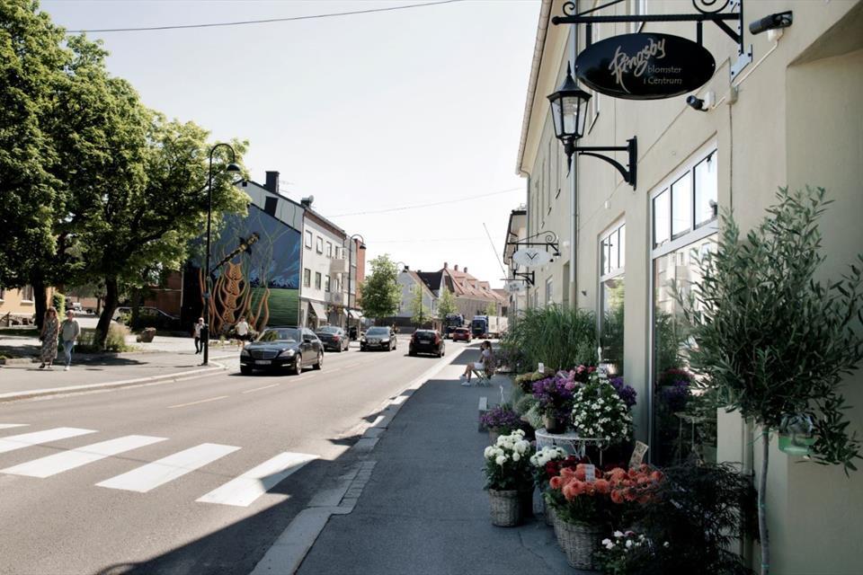 Elbilferie i Rakkestad